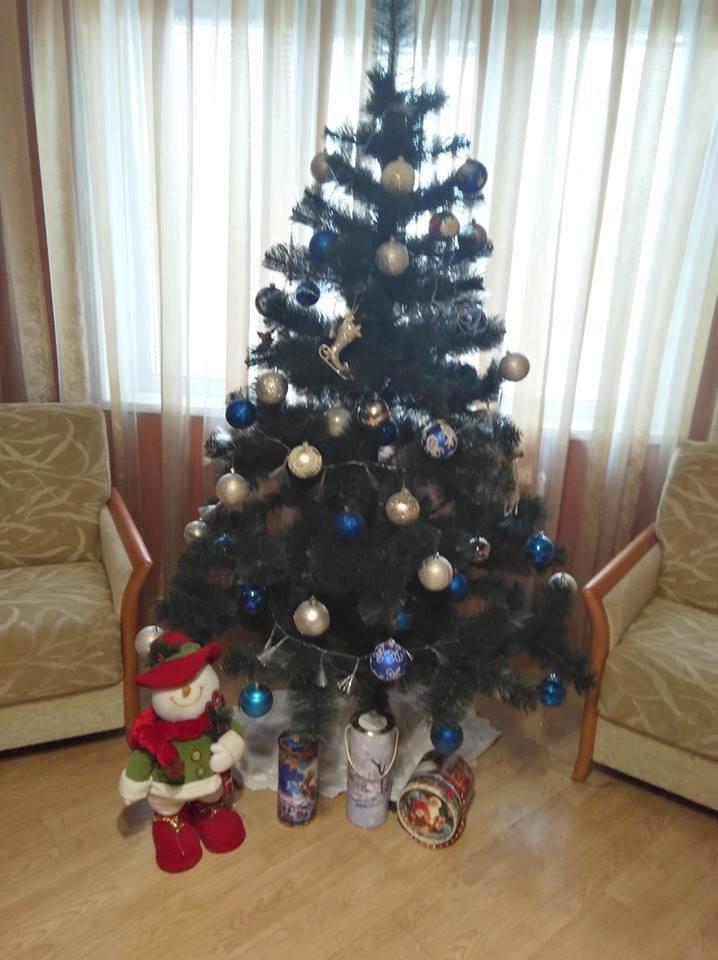 Новый год стучится в дверь: как криворожане дома украсили новогодние елки, - ФОТО , фото-4