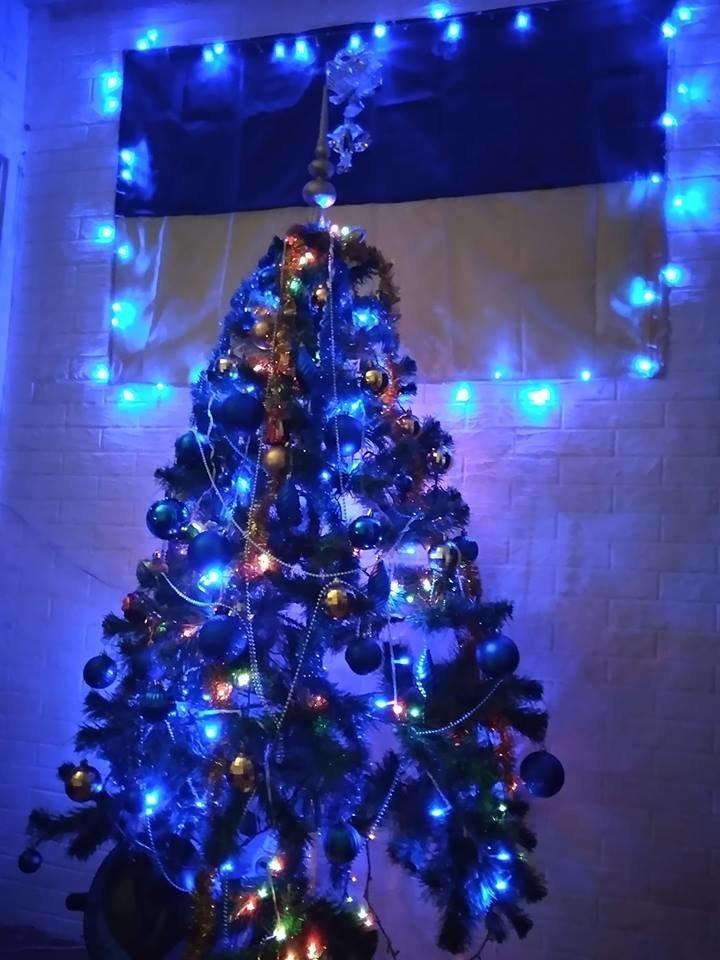 Новый год стучится в дверь: как криворожане дома украсили новогодние елки, - ФОТО , фото-5