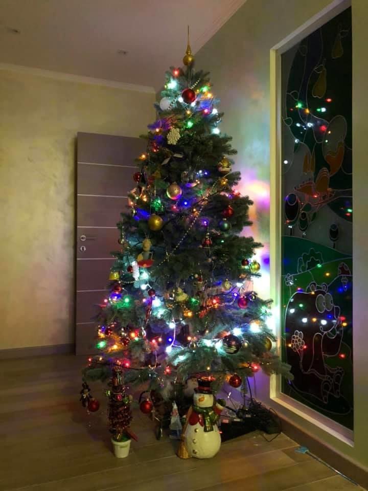 Новый год стучится в дверь: как криворожане дома украсили новогодние елки, - ФОТО , фото-7