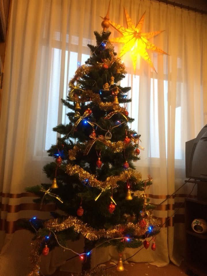 Новый год стучится в дверь: как криворожане дома украсили новогодние елки, - ФОТО , фото-8