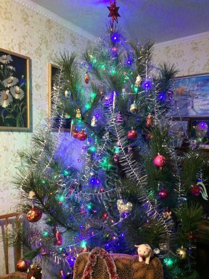 Новый год стучится в дверь: как криворожане дома украсили новогодние елки, - ФОТО , фото-9