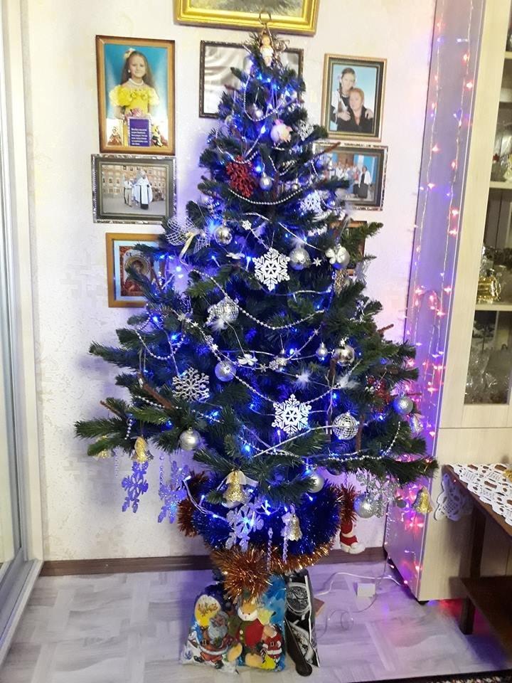 Новый год стучится в дверь: как криворожане дома украсили новогодние елки, - ФОТО , фото-11
