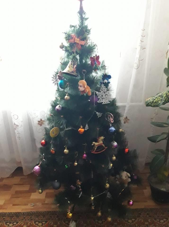 Новый год стучится в дверь: как криворожане дома украсили новогодние елки, - ФОТО , фото-13