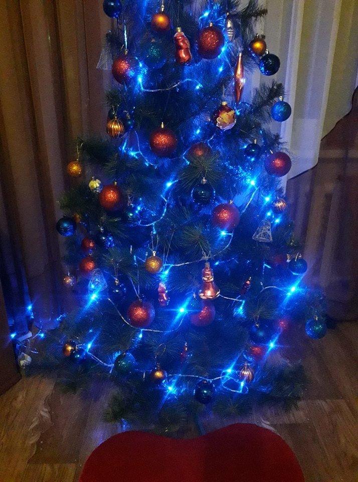 Новый год стучится в дверь: как криворожане дома украсили новогодние елки, - ФОТО , фото-14