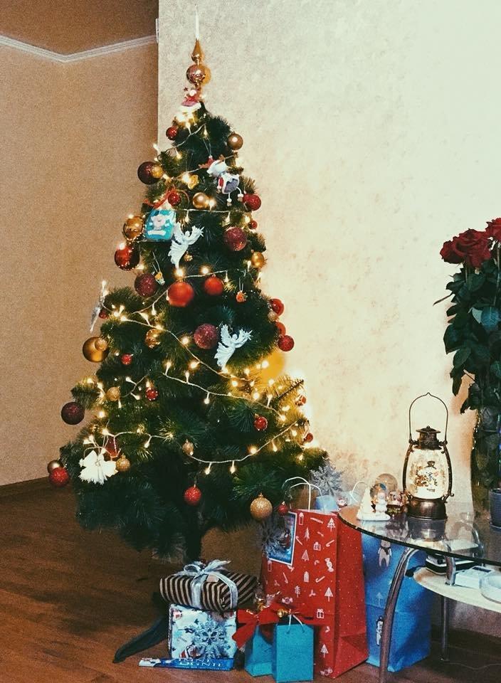Новый год стучится в дверь: как криворожане дома украсили новогодние елки, - ФОТО , фото-16