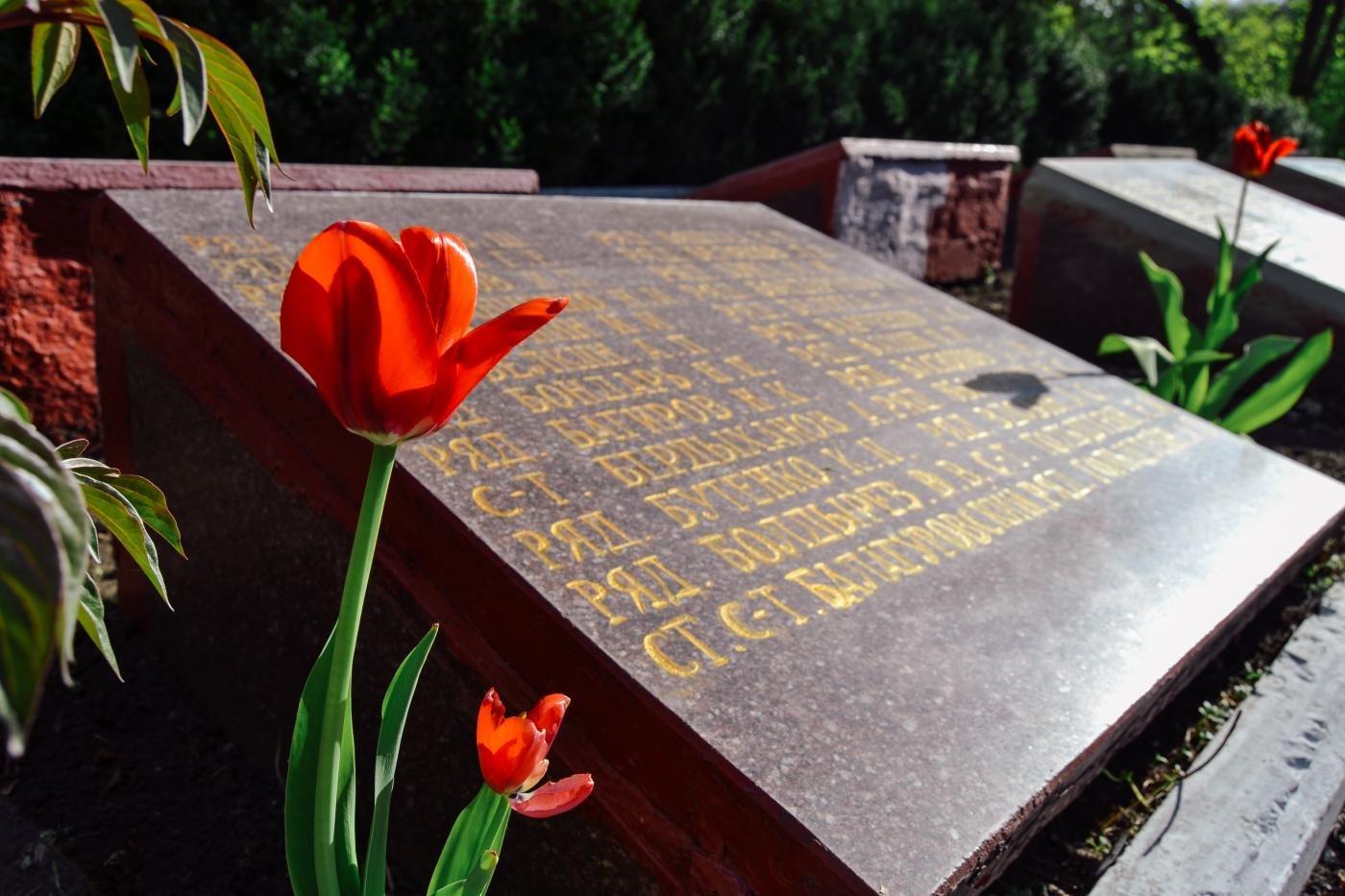 Криворожане собственными силами привели в порядок братскую могилу ВМВ, - ФОТО , фото-2