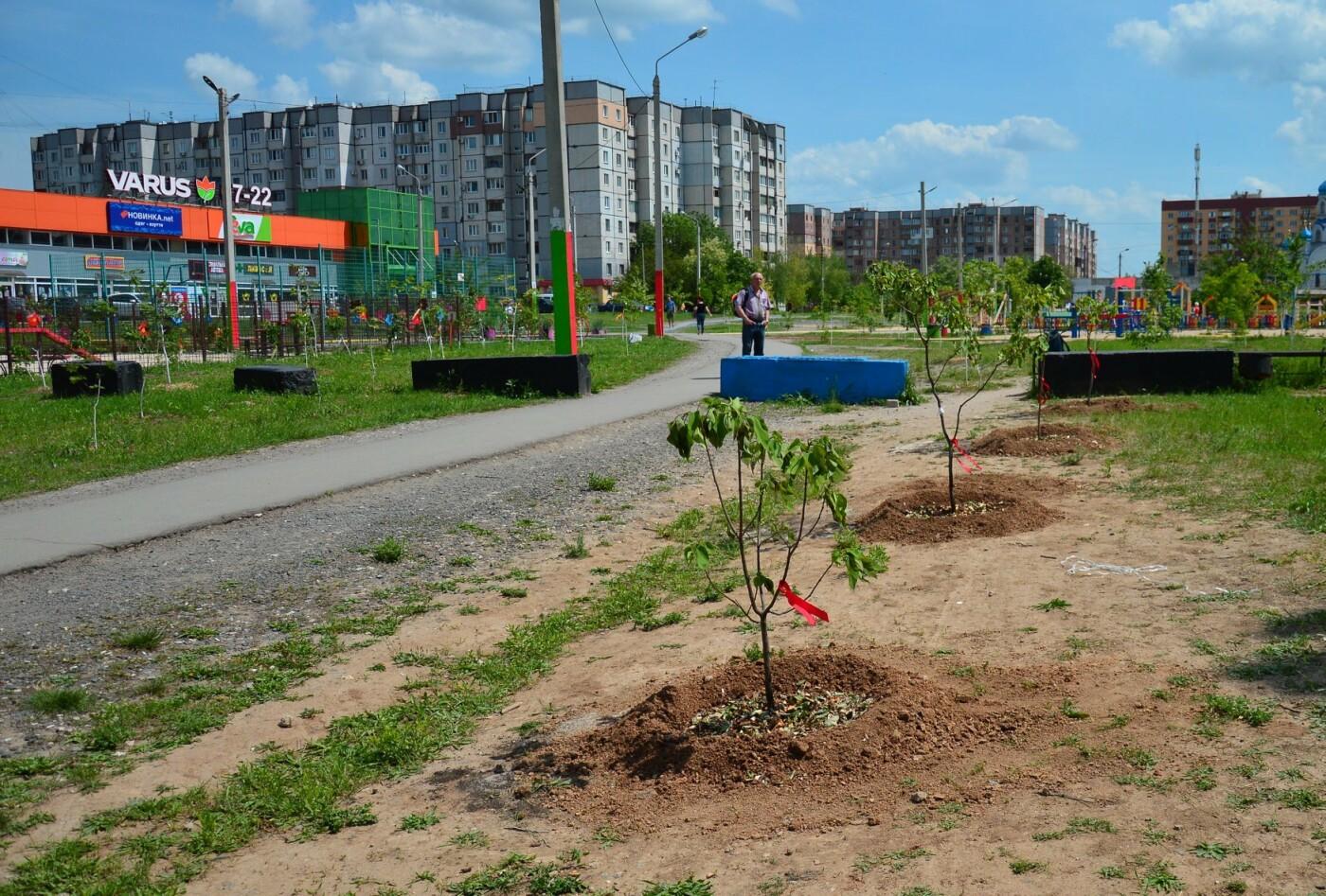 В Кривом Роге появился живой памятник людям, которые умерли из-за СПИДа, - ФОТО , фото-10