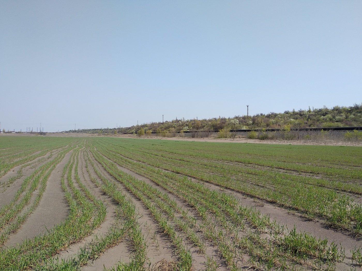 Центральный ГОК использует зеленые технологии в борьбе с пылью, фото-2