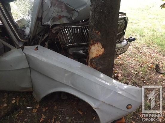 """В Кривом Роге пьяный водитель разбил """"Волгу"""" об дерево и чуть не убил пассажира, - ФОТО, фото-3"""