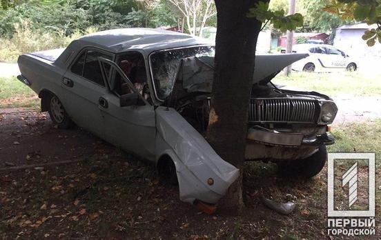 """В Кривом Роге пьяный водитель разбил """"Волгу"""" об дерево и чуть не убил пассажира, - ФОТО, фото-5"""