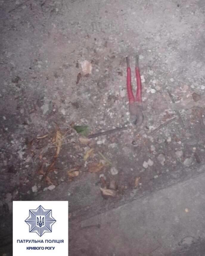 """Подозреваемый в краже криворожанин утверждал, что """"прятался ночью от гусей"""", - ФОТО , фото-1"""