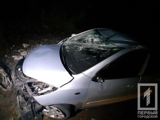 "В Кривом Роге ""Hyundai"" снес столб: электроопора раздавила машину и травмировала мужчину, - ФОТО, фото-2"