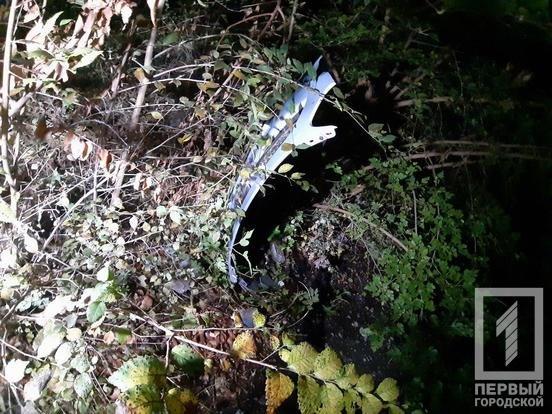 "В Кривом Роге ""Hyundai"" снес столб: электроопора раздавила машину и травмировала мужчину, - ФОТО, фото-6"