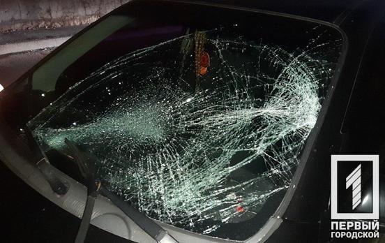 ДТП в Кривом Роге: полицейский сбил велосипедиста, - ФОТО , фото-3