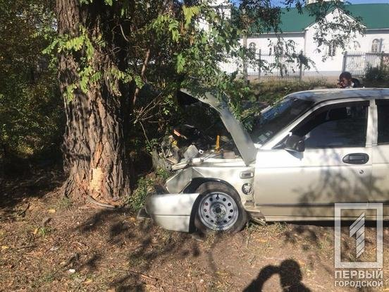 "В Кривом Роге ""Лада"" влетела в дерево. Полиция ищет свидетелей, - ФОТО , фото-1"