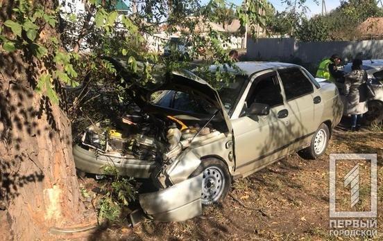 "В Кривом Роге ""Лада"" влетела в дерево. Полиция ищет свидетелей, - ФОТО , фото-3"