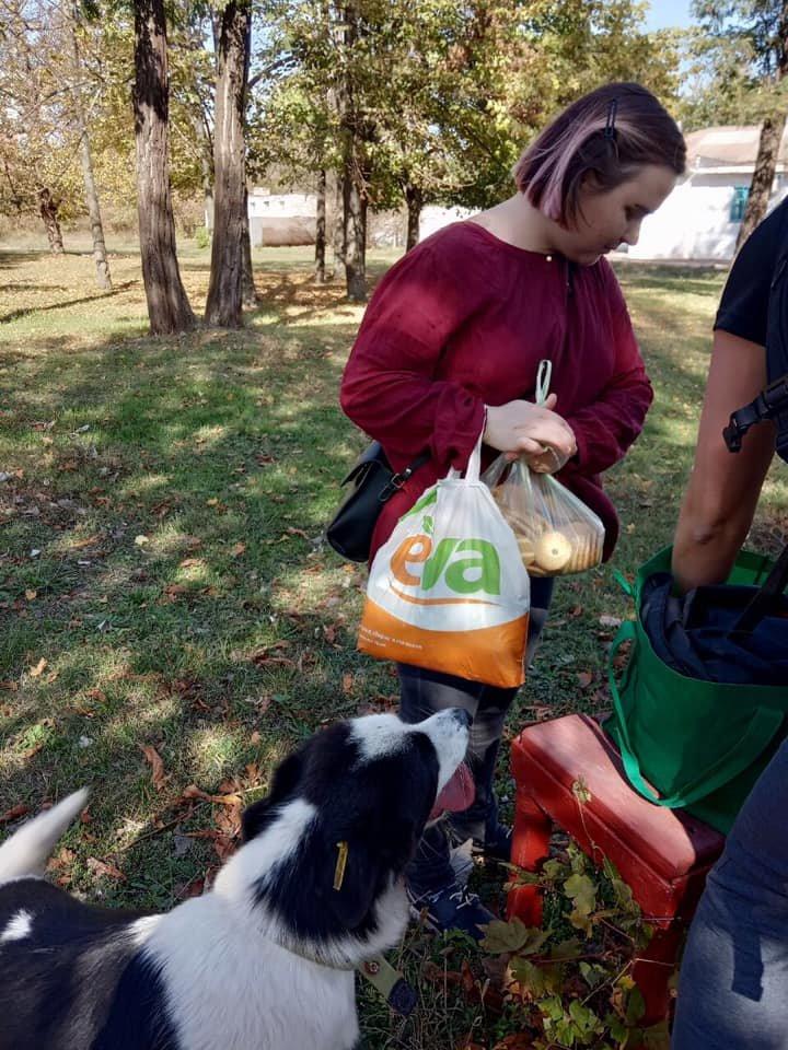 """""""Little Big Dog Walk"""": Криворожане выгуливали собак, которые ищут семью, - ФОТО, фото-7"""