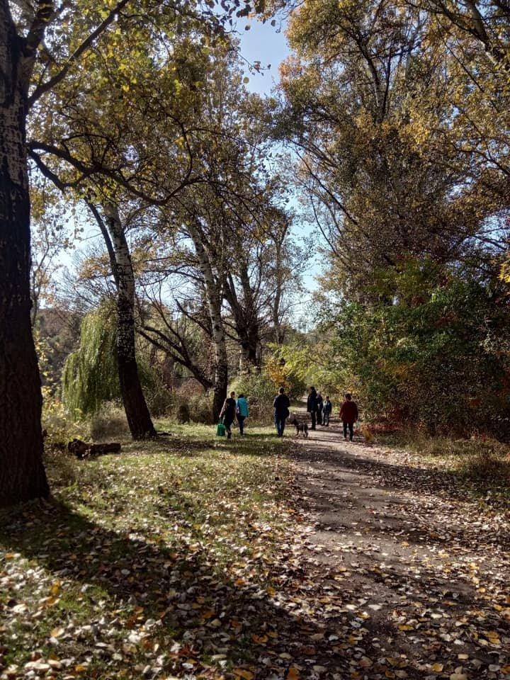 """""""Little Big Dog Walk"""": Криворожане выгуливали собак, которые ищут семью, - ФОТО, фото-6"""