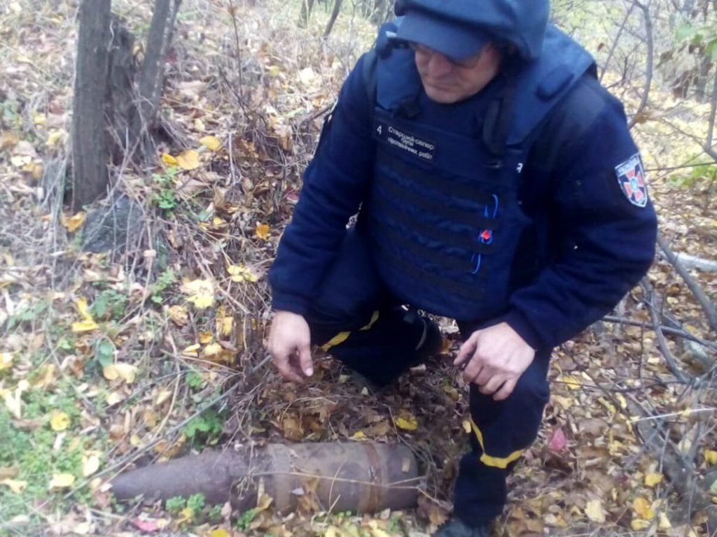 В Криворожском районе во время выпаса скота обнаружили взрывоопасный предмет, - ФОТО, фото-4