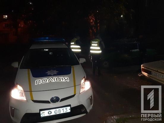 Трое несовершеннолетних криворожан чуть не попали в ДТП на машине без документов, - ФОТО , фото-4