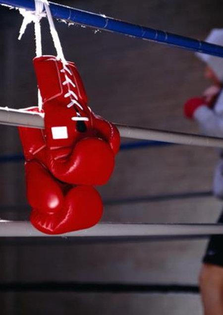Женский фестиваль Анима, турнир по боксу, регбийный матч, концерт Alekseev: куда пойти криворожанам на выходных , фото-6