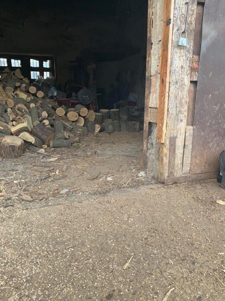 В Кривом Роге в ходе обыска на предприятии нашли склад незаконно срубленной древесины, - ФОТО, фото-1