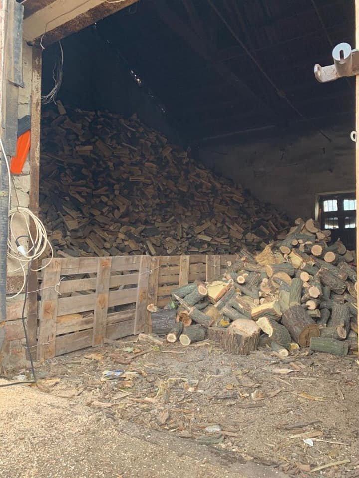 В Кривом Роге в ходе обыска на предприятии нашли склад незаконно срубленной древесины, - ФОТО, фото-2