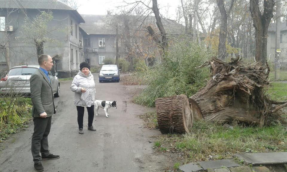 В Кривом Роге больше 4 месяцев ликвидируют последствия урагана, - ФОТО, фото-3
