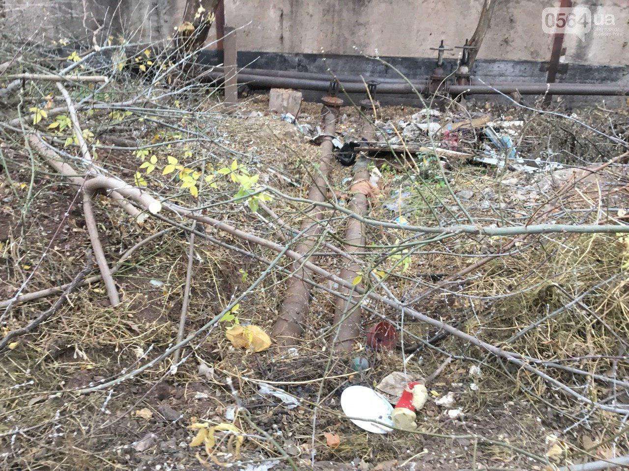 В Кривом Роге больше 4 месяцев ликвидируют последствия урагана, - ФОТО, фото-7