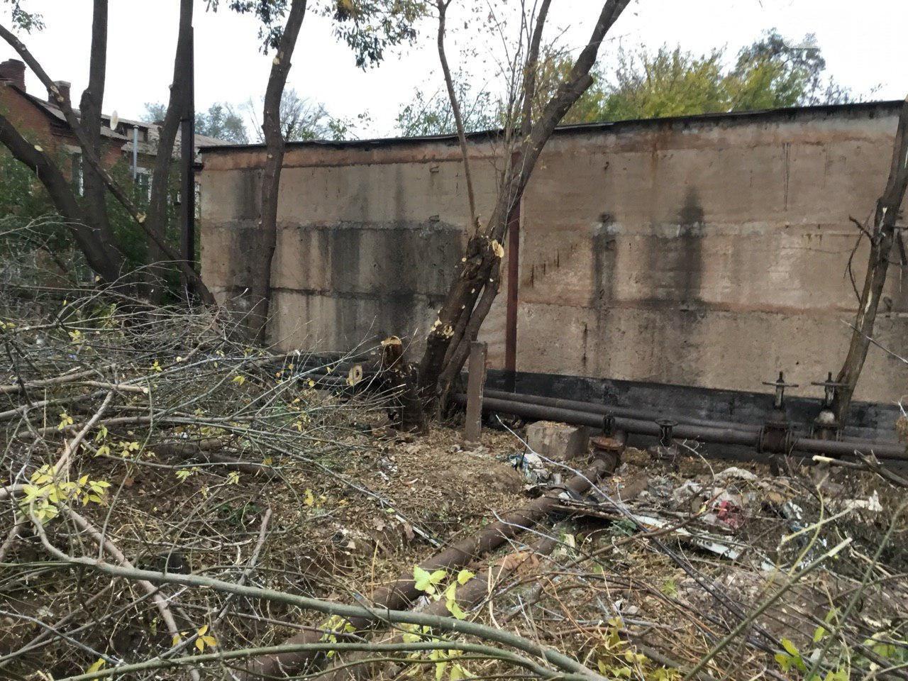 В Кривом Роге больше 4 месяцев ликвидируют последствия урагана, - ФОТО, фото-4