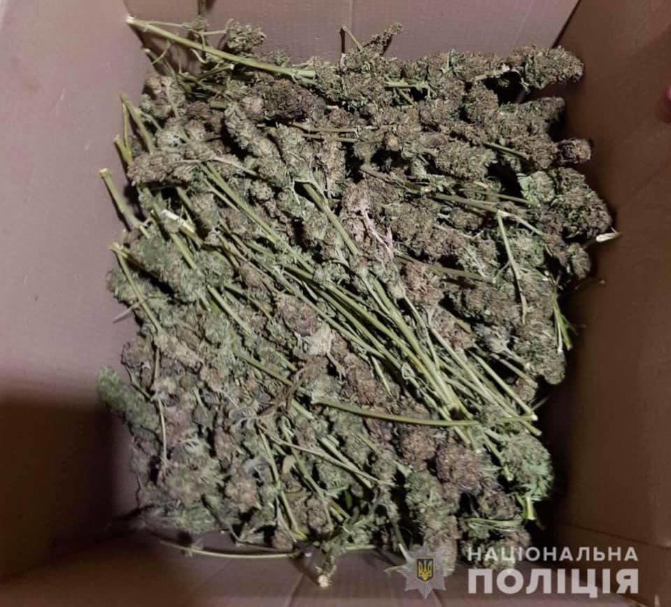 У жителя Криворожского района полицейские нашли 17 мешков конопли, - ФОТО, фото-2