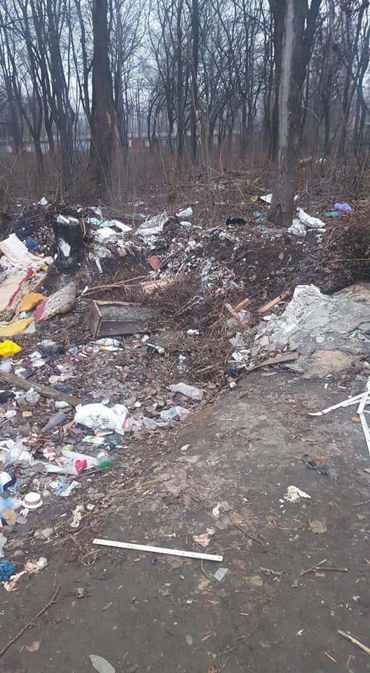 Стихийная мусорная свалка в Терновском районе Кривого Рога лишила горожан праздничного настроения, - ФОТО, фото-2