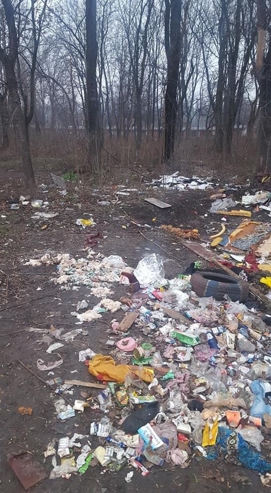 Стихийная мусорная свалка в Терновском районе Кривого Рога лишила горожан праздничного настроения, - ФОТО, фото-1
