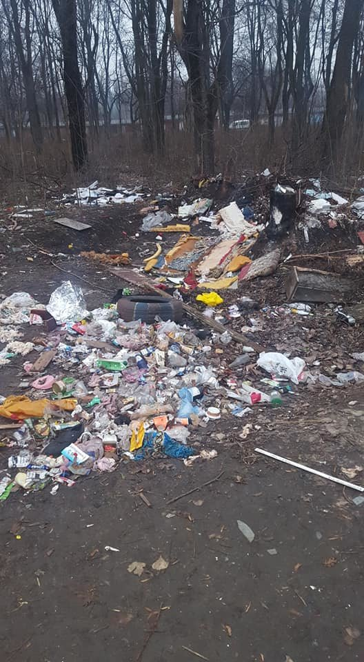 Стихийная мусорная свалка в Терновском районе Кривого Рога лишила горожан праздничного настроения, - ФОТО, фото-3