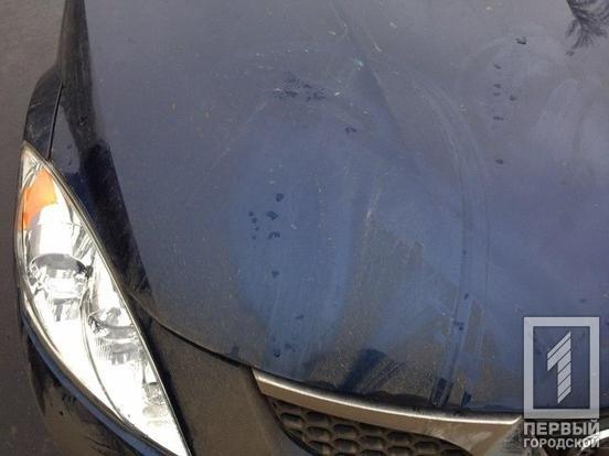 Полиция ищет очевидцев ДТП, в котором иномарка сбила 81-летнего криворожанина, - ФОТО , фото-3