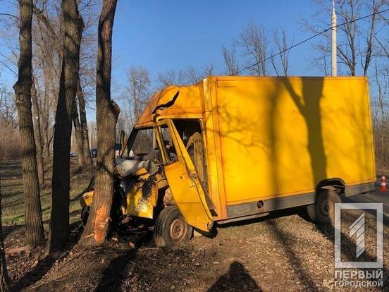 В Кривом Роге водитель грузовика влетел в дерево, - ФОТО , фото-4