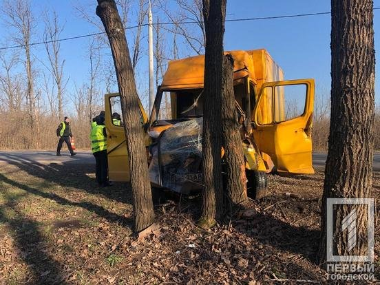 В Кривом Роге водитель грузовика влетел в дерево, - ФОТО , фото-5