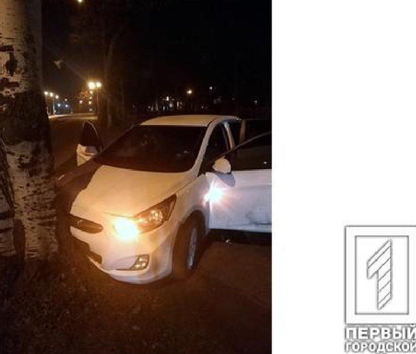Проигнорировав требование криворожских патрульных об остановке, пьяная компания на автомобиле врезалась в дерево, - ФОТО, фото-1