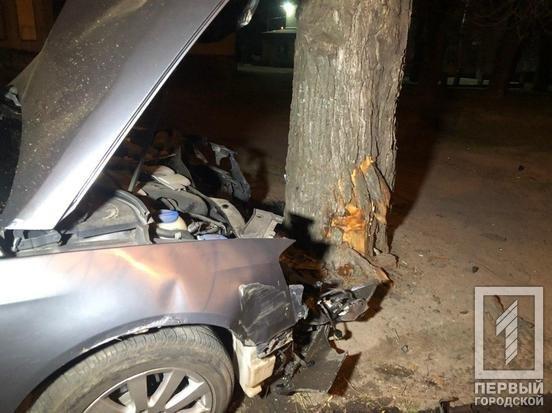 В Кривом Роге иномарка врезалась в дерево, водитель госпитализирован с серьезной травмой, - ФОТО, фото-1