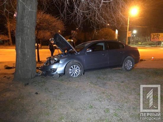 В Кривом Роге иномарка врезалась в дерево, водитель госпитализирован с серьезной травмой, - ФОТО, фото-4