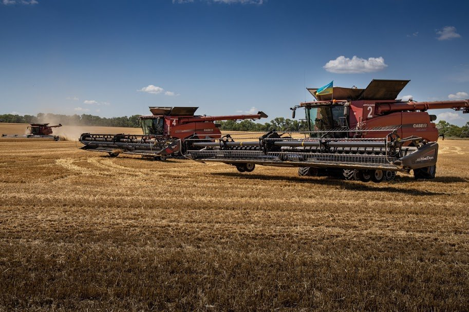 Днепропетровщина - в национальных лидерах по урожаю ранних зерновых, - ФОТО , фото-3