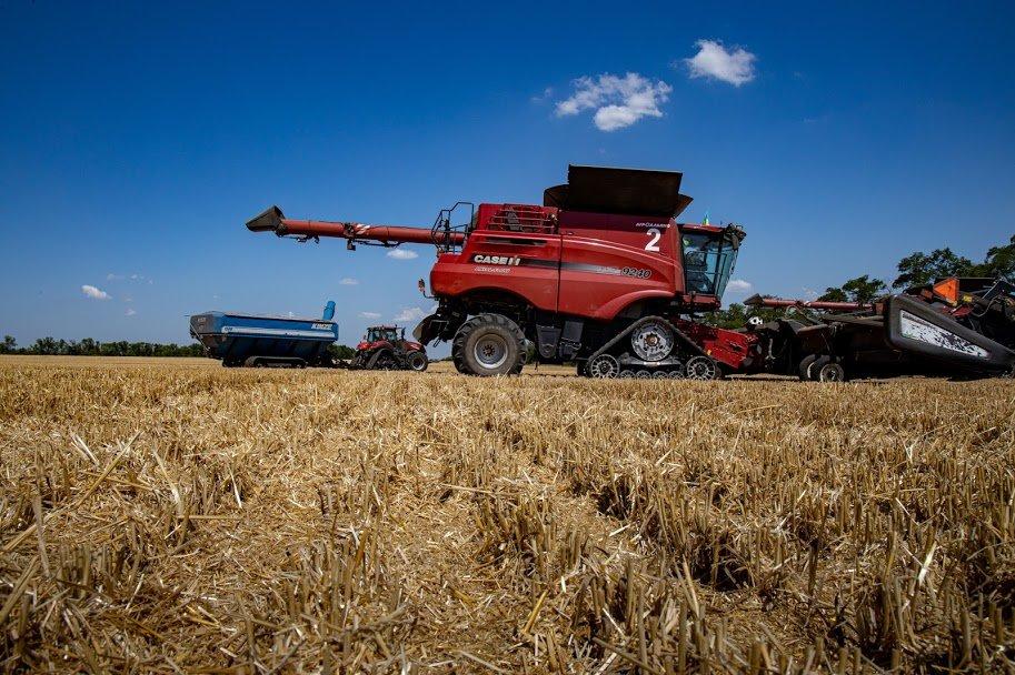 Днепропетровщина - в национальных лидерах по урожаю ранних зерновых, - ФОТО , фото-1