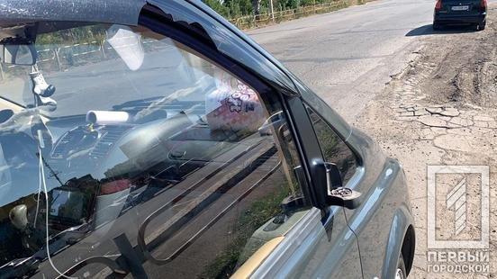 В Кривом Роге минивэн сбил женщину. Полиция ищет очевидцев, - ФОТО, фото-2