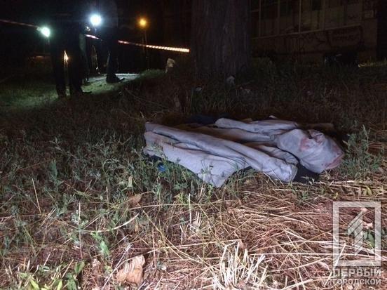 В Кривом Роге во время массовой драки погиб 21-летний парень, - ФОТО , фото-3