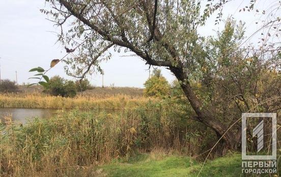 В Криворожском районе мужчина обнаружил свою знакомую повешенной, - ФОТО 18+, фото-2