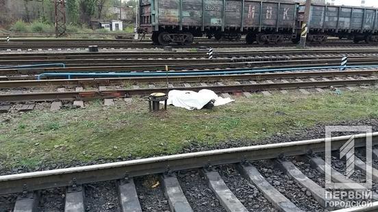 "Возле станции ""Кривой Рог"" поезд переехал мужчину, - ФОТО 18+ , фото-2"