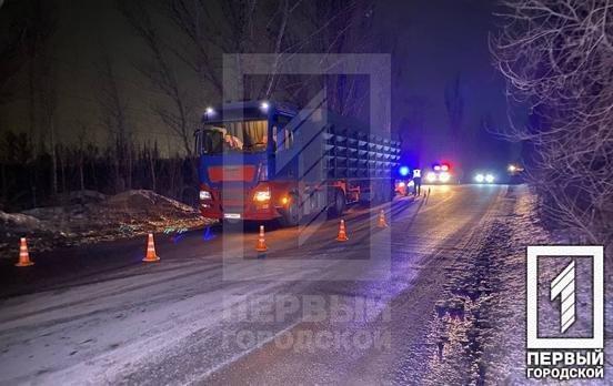 Смертельное ДТП в Кривом Роге: фура сбила двоих пешеходов, - ФОТО , фото-7