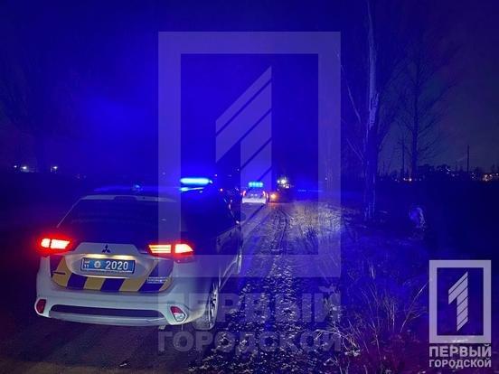 Смертельное ДТП в Кривом Роге: фура сбила двоих пешеходов, - ФОТО , фото-3