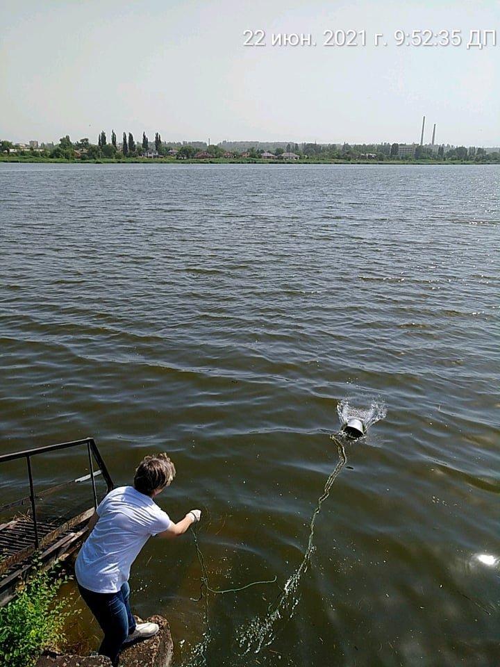 В Кривом Роге отобрали пробы воды в реке Саксагань для лабораторных исследований, - ФОТО , фото-8