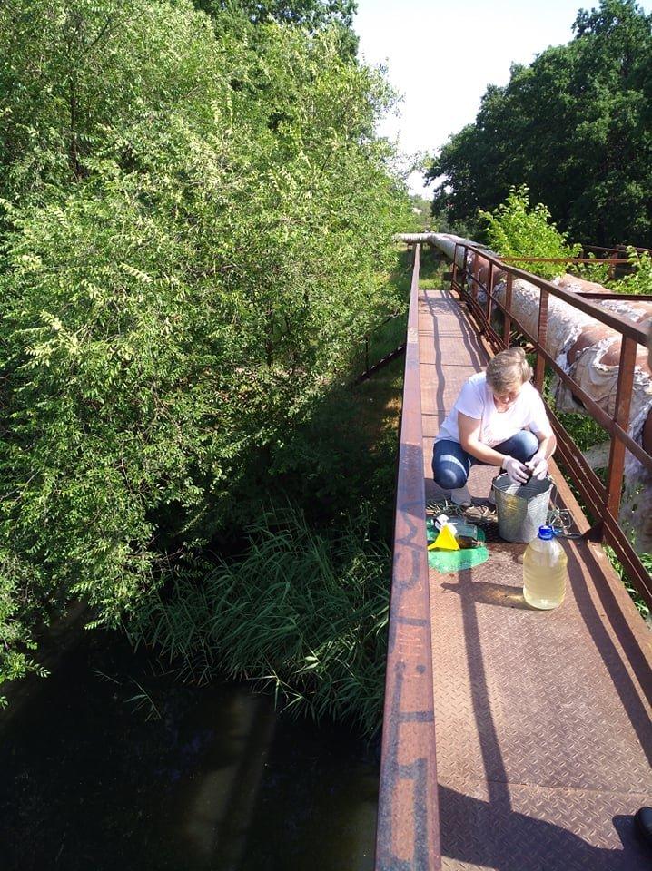 В Кривом Роге отобрали пробы воды в реке Саксагань для лабораторных исследований, - ФОТО , фото-6